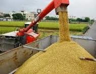 RICE-CULTIVATION-AND-PROCESSING-BUSINESS-PLAN-IN-NIGERIA-3