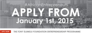 elumelu entrepreneurship programme
