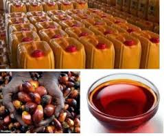 PALM OIL PRODUCTION AND PROCESSING BUSINESS PLAN IN NIGERIA 2