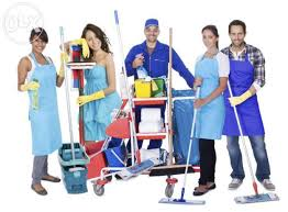 Executive Summary of General Cleaning Business Plan in Nigeria