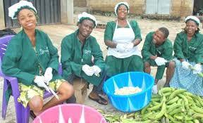 Piggery Farming Business Plan (PDF) In Nigeria – Sample Production Template Manual