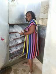 Solar Powered Cold Room Nigeria Why The Foods Of The