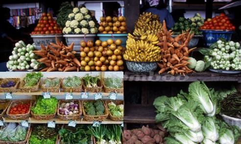 FOOD BLOG BUSINESS PLAN IN NIGERIA