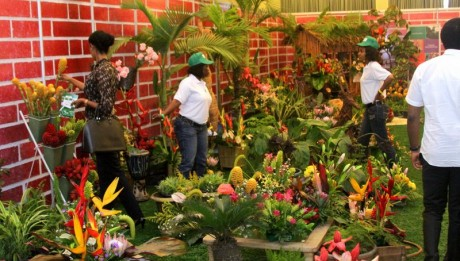 HORTICULTURE BUSINESS PLAN IN NIGERIA