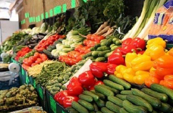 vegetable selling business plan