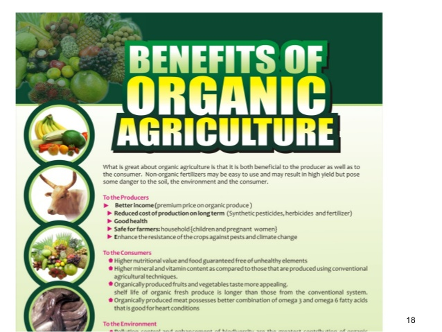 Produce From Organic Farms