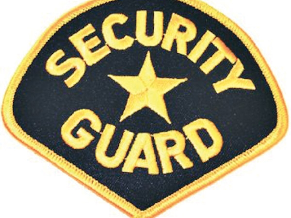 Security Guard Company Business Plan in Nigeria