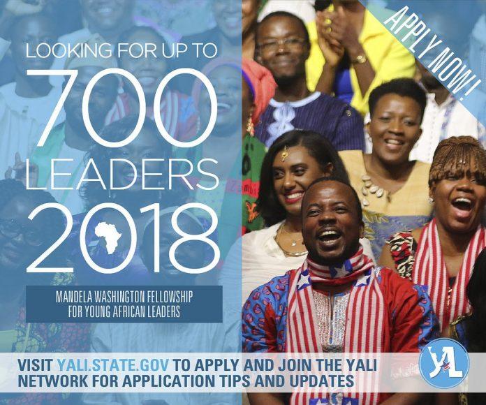The 2018 Mandela Washington Fellowship application