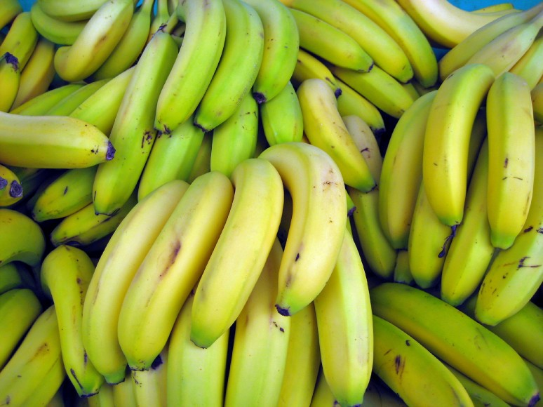 BANANA FARMING AND PROCESSING BUSINESS PLAN IN NIGERIA