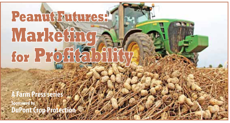 PEANUT FARMING AND PROCESSING BUSINESS PLAN IN NIGERIA