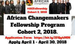 Apply for African Changemakers Fellowship Program for Cohort 2, 2018