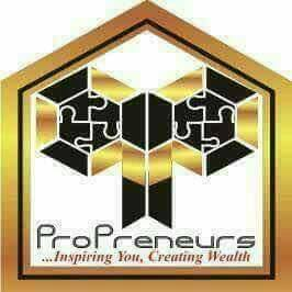 What is Propreneurs World Network Marketing in Nigeria