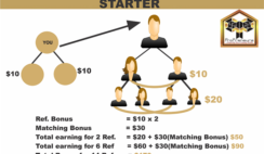 PROPRENEUR NETWORK MARKETING COMPENSATION PLAN & MATRIX ANALYSIS IN NIGERIA