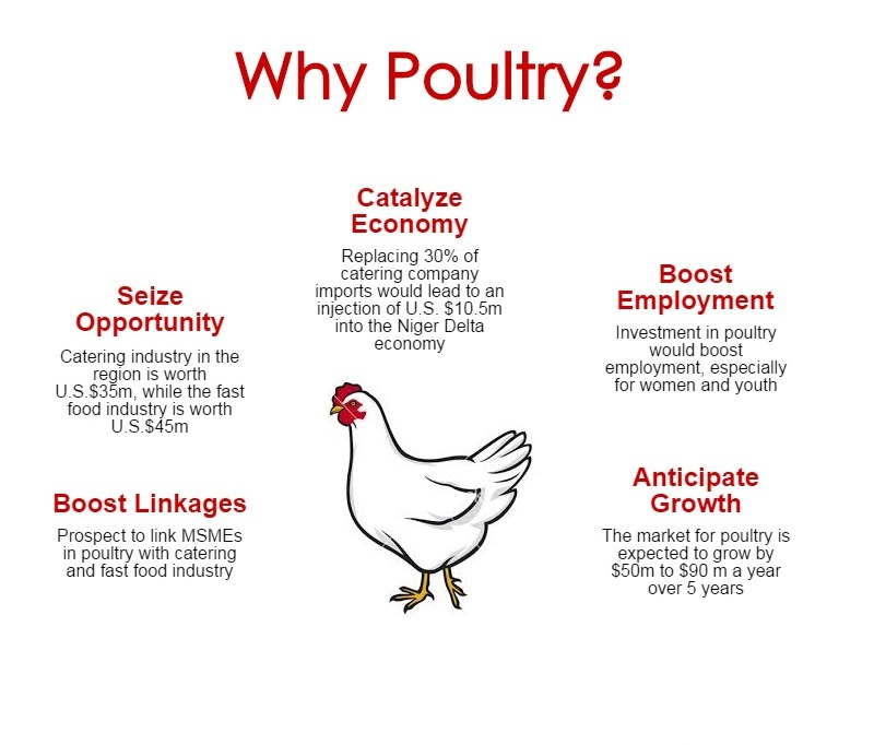 12 ways to profit from the Poultry Value Chain in Nigeria