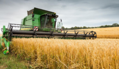 HOW TO START A RICE PRODUCTION BUSINESS | COSTS, IMPLICATIONS AND REQUIREMENTS