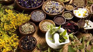 Executive-Summary-of-Herbal-Business-plan-in-Nigeria