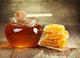 Executive-Summary-of-Honey-Business-Plan-in-Nigeria