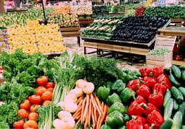 Executive Summary of Vegetable Farming Business Plan in Nigeria