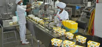 Executive Summary of Yoghurt production Business Plan in Nigeria.