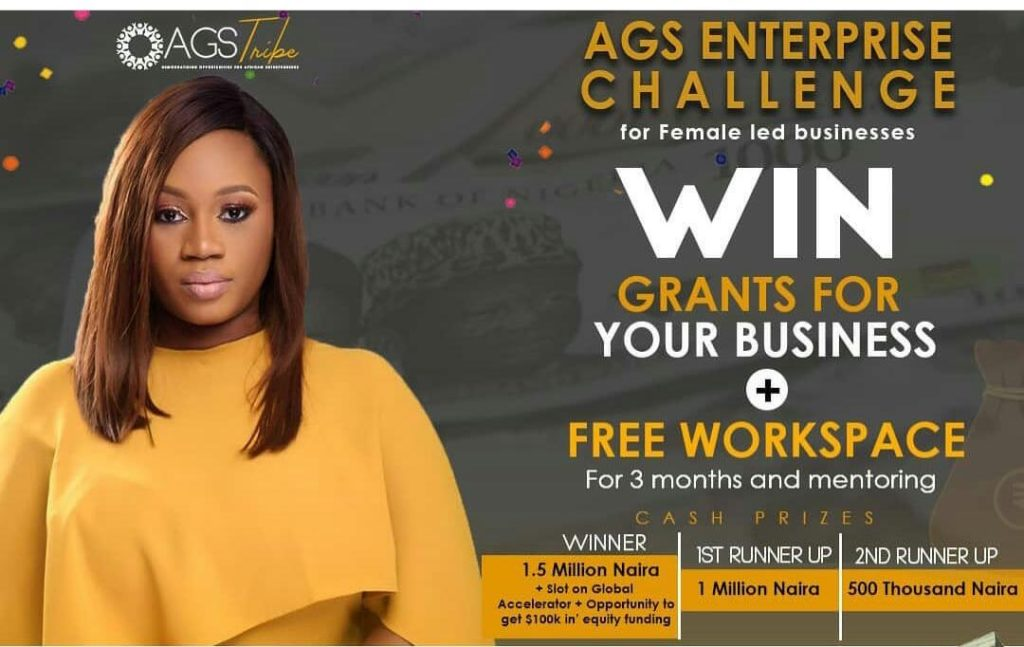 Apply for N3 million AGS Enterprise Challenge for Female Led Business