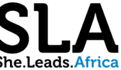 Apply for N2 million She Leads Africa Accelerator Program.