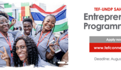 The TEF-UNDP Sahel Youth Entrepreneurship Programme 2019 FAQs for Northern Nigeria, Niger, Chad, Cameroun, Mauritania, Mali and Burkina Faso