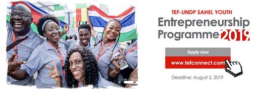 The TEF-UNDP Sahel Youth Entrepreneurship Programme 2019 FAQs for Northern Nigeria, Niger, Chad, Cameroun, Mauritania, Mali and Burkina Faso
